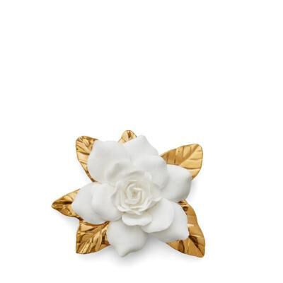 زهرة غاردينيا الذهبية