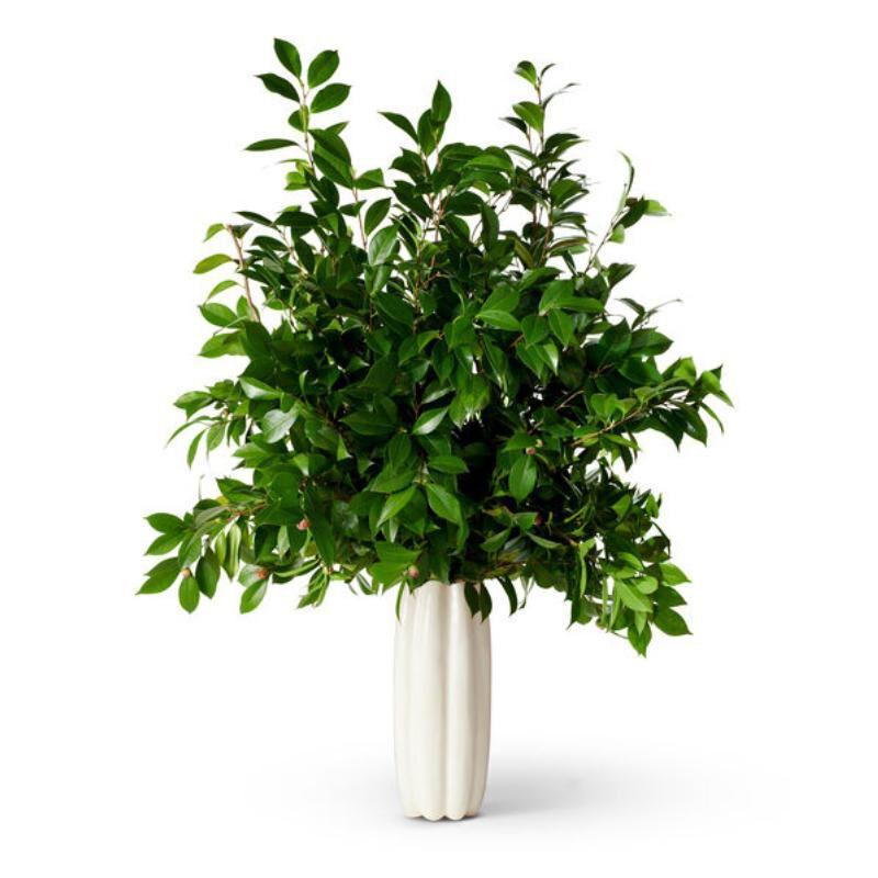 Mirabelle Tall Vase, large