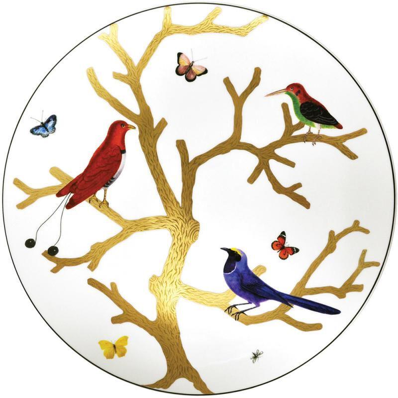 طبق مسطح طيور, large
