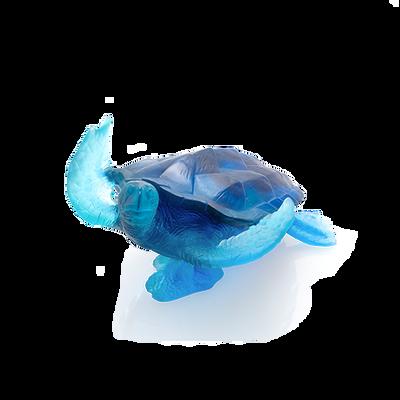 Large Blue Sea Turtle Mer De Corail
