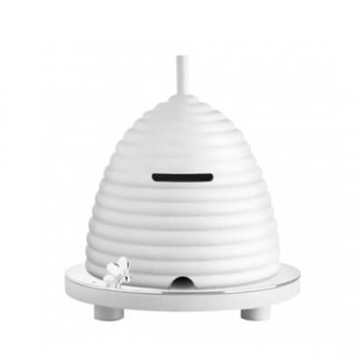 BEEBEE MONEY BOX