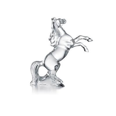 حصان مارينغو