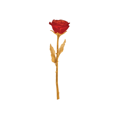 الوردة الأبدية