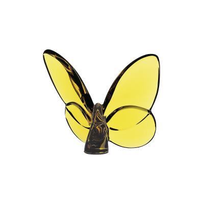 الفراشة المحظوظة
