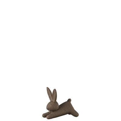 أرنب متوسط