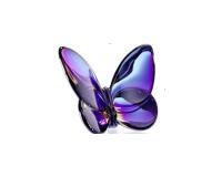 الفراشة المحظوظة, small