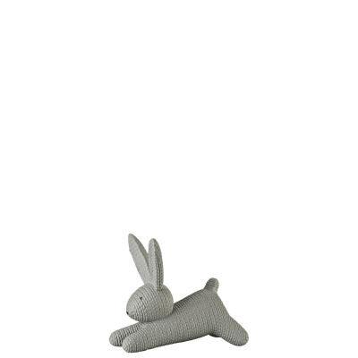 أرنب رمادي كبير