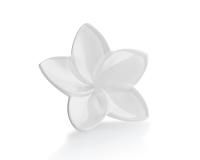 مجموعة أزهار, small