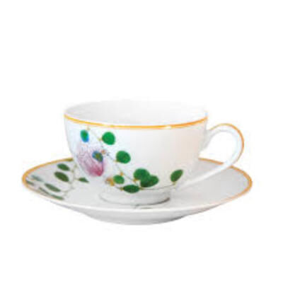 JARDIN INDIEN Tea cup and saucer