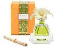 Lime & Orange Blossoms Air Essence, small